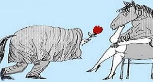 Déclaration d'amour drôle