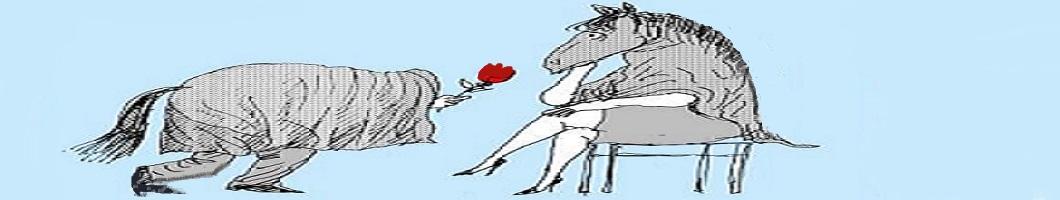 Déclaration d'amour originale